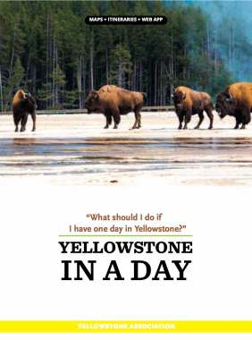 Yellowstone in a Day. COVER1